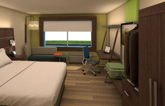 Chambre Holiday Inn Express & Suites DALLAS NORTH - ADDISON