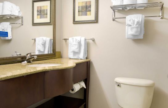 Kamers Clarion Hotel Orlando International Airport