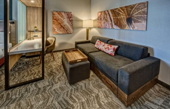 Zimmer SpringHill Suites Amarillo