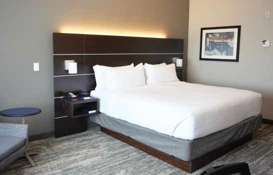 Chambre Holiday Inn Express & Suites JACKSONVILLE W - I295 AND I10