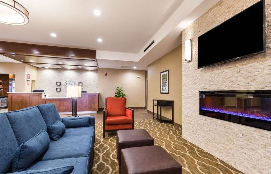 Hotelhalle Comfort Suites Greenville South