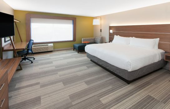 Zimmer Holiday Inn Express & Suites STERLING HEIGHTS-DETROIT AREA