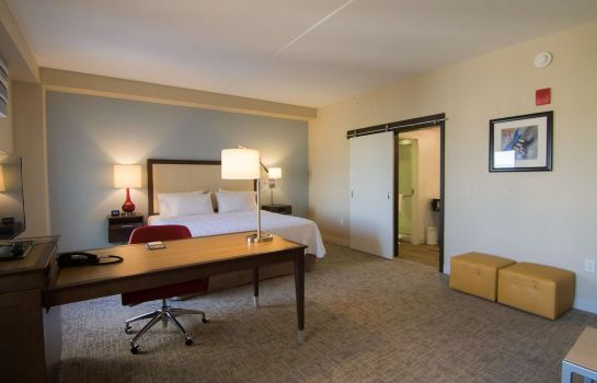 Suite Hampton Inn - Suites Tulsa Downtown OK