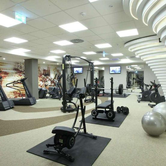 wellnessFitness