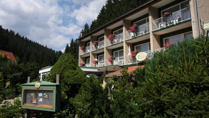Picture Harzperle Pension
