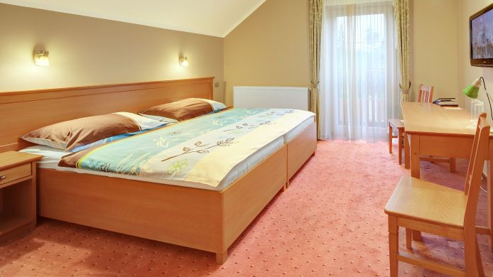 Double room (standard) Harmonie Penzion