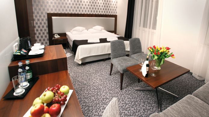 Double room (standard) Zamek Centrum Hotel
