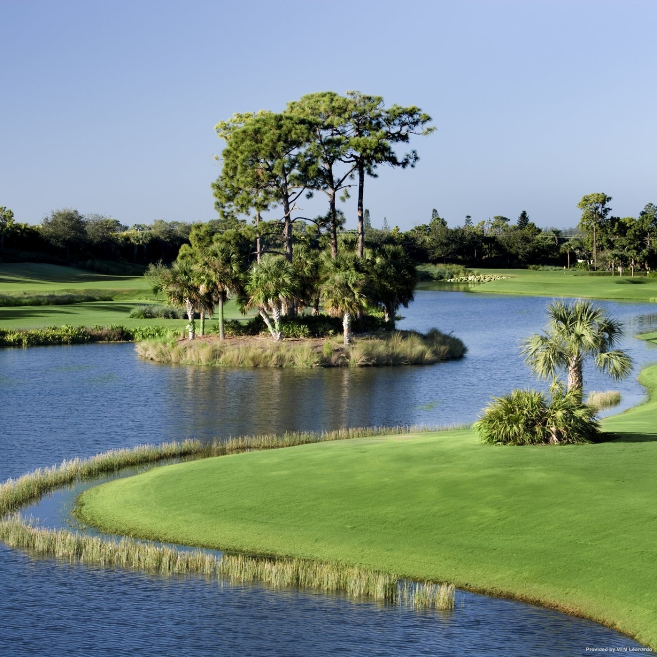 Hotel Naples Grande Beach Resort United States Of America At Hrs With Free Services